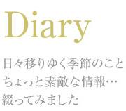 La campagne Diary